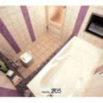 歌舞伎町 ホテル アトラス 205号室