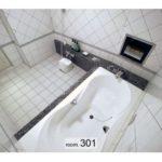 歌舞伎町 ホテル アトラス 301号室