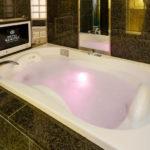 歌舞伎町 ホテル 石庭 1202号室