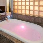歌舞伎町 ホテル 石庭 402号室